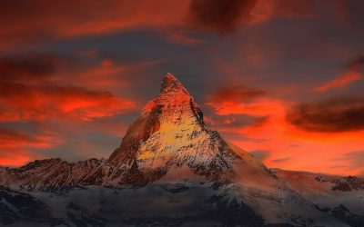 Swiss Life Select: Saldenklage und Fremdvermittlung